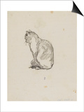 Etude de chat (Villiers) Prints by Thomas Couture