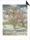 Bluehende Pfirsichbaeume (Souvenir De Mauve), 1888 Prints by Vincent van Gogh