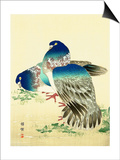Blue Pigeons Posters by Bairei Kono