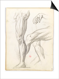 Carnet de dessins Prints by Gustave Moreau