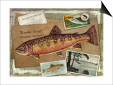 Brook Trout Prints by Kate Ward Thacker