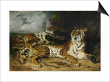 A Young Tiger Playing with Its Mother, 1830 Posters by Eugene Delacroix