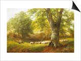 Sunshine in the Country Prints by George Turner