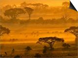 Herbivores at Sunrise, Amboseli Wildlife Reserve, Kenya Posters by Vadim Ghirda