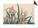 Iris et sauterelle Prints by Katsushika Hokusai