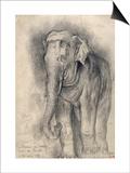 Eléphant sur le vif Prints by Gustave Moreau