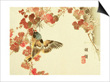 Flowers and Birds Picture Album by Bairei No.10 Print by Bairei Kono