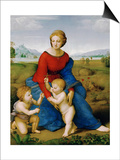 Madonna on the Meadow, 1505 or 1506 Posters by  Raphael