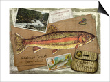 Rainbow Trout Posters by Kate Ward Thacker