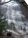 White Mountain Waterfalls Posters by Jim Cole