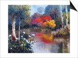 Vibrant Reflections Prints by Kent Wallis