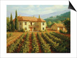 Tuscan Vineyard Prints by Roger Williams