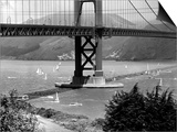 Golden Gate Bridge on Opening Day of the Yacht Season Print