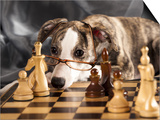 Puppy To Play Chess Posters by  Lilun