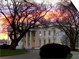 The Early Morning Sunrise Warms up the Winter Sky Behind the White House Prints