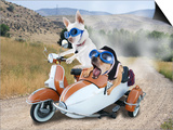Two Chihuahuas In A Scooter Poster by  graphicphoto