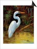 Tropical Egret I Print by  Kilian
