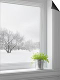 Green Plant and Winter Landscape Seen Through the Window Poster by  GoodMood Photo