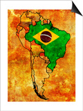 Brazil Prints by  michal812