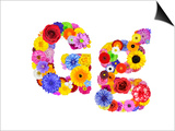 Flower Alphabet Isolated On White - Letter G Prints by  tr3gi