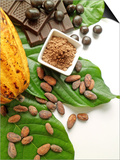 Cocoa Pod With Cocoa Beans, Powder, And Chocolates Poster by  vd808bs