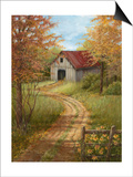Roadside Barn Art by Lene Alston Casey