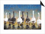 Waddling in the Rain Prints by Joe Sambataro