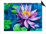 Water Lily Poster by Boyan Dimitrov