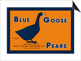 Blue Goose Pears Posters