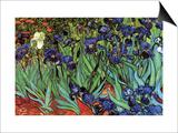 Iris Affischer av Vincent van Gogh