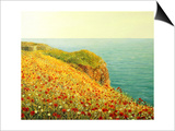 Poppies On Kaliakra Posters by  kirilstanchev