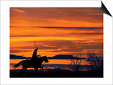 Ropin' at Sunset Prints by Bobbie Goodrich