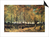Lane with Poplars Art by Vincent van Gogh