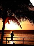 A Afternoon Runner Passes Under a Palm Tree as the Sun Sets Behind Posters