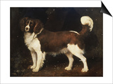 A Spaniel in a Landscape, 1784 Art by George Stubbs