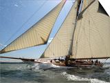 Mariquita under Sail, Solent Race, British Classic Yacht Club Regatta, Cowes Classic Week, 2008 Prints by Rick Tomlinson