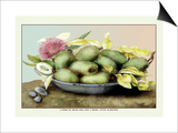 Dish of Medlars, A Rose, and Almonds Prints by Giovanna Garzoni