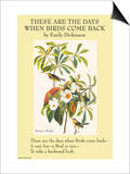 These Are the Day When Birds Come Back Print by Emily Dickinson