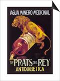 Agua Minero Medicinal de Prats del Rey Posters