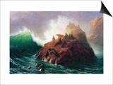 Seal Rock, California Reprodukcje autor Albert Bierstadt