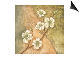 Burlap Dogwood Blossom Posters by Tina Chaden