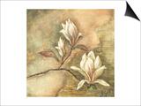 Burlap Magnolia I Prints by Tina Chaden