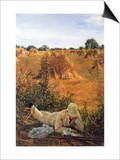 94 Degrees In The Shade Posters by Sir Lawrence Alma-Tadema