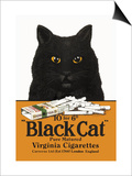 Black Cat Pure Matured Virginia Cigarettes Prints