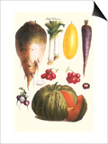 Vegetables: Melon, Purple Carrot, Cherry Tomatoes, Onions, Turnip, Leek Print by Philippe-Victoire Leveque de Vilmorin