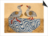 Goose and Duck Print by Aristotle ibn Bakhtishu