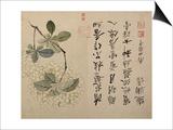 Hortensias Póster por Yun Shouping