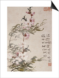 Willow and Peach Blossoms Prints by Li Shan