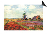 Tulips of Holland Posters by Claude Monet
