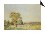 A Summer's Day Prints by Alfred Sisley